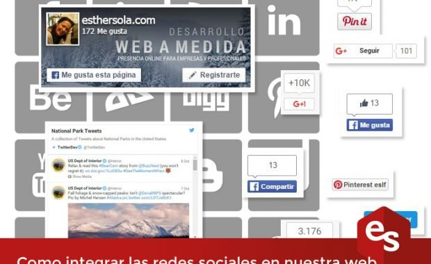 redes sociales en la web