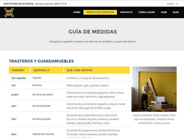 Desarrollo web www.multi-store.com