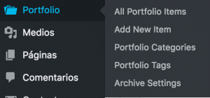 Portfolio custom post type