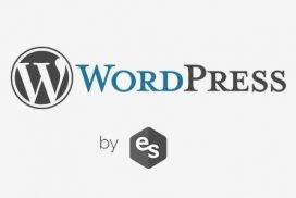 Cómo saber que plugin escoger para WordPress