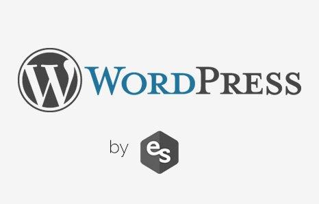 Artículos sobre WordPress